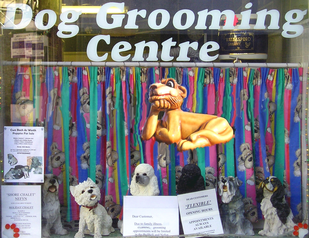 Dog Grooming Centre